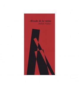 ALZADO DE LA RUINA
